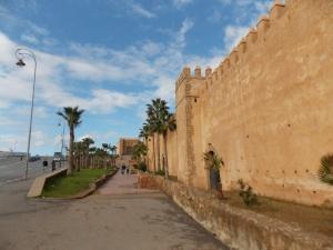 Vue-extérieure-de-la-kasbah-des-oudayas