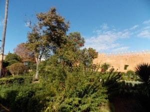 Entrée-au-jardin-andalou-de-rabat-est-gratuite