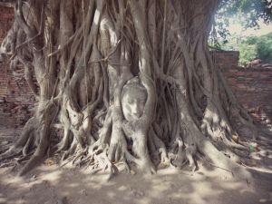Wat-Phra-Mahathat