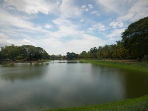 paysage sukhothai