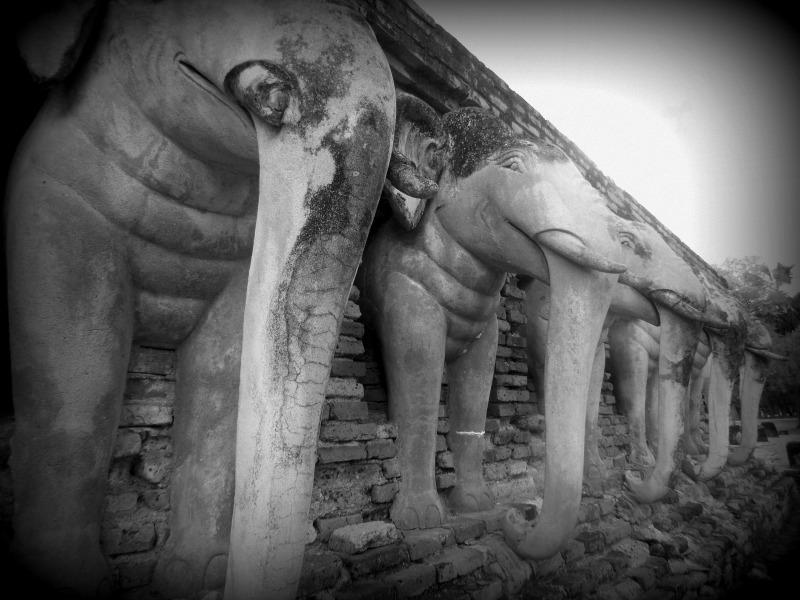 éléphants-sukhothai