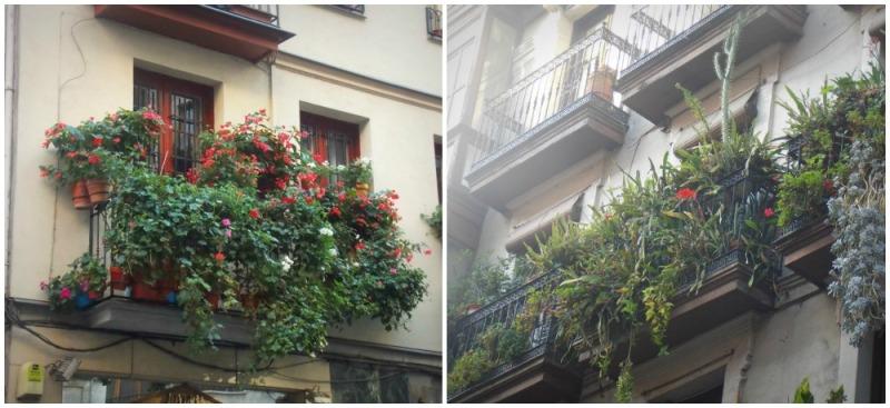 Plantes-bâtiments-bilbao